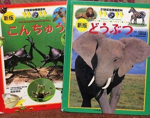 昆虫図鑑と動物図鑑