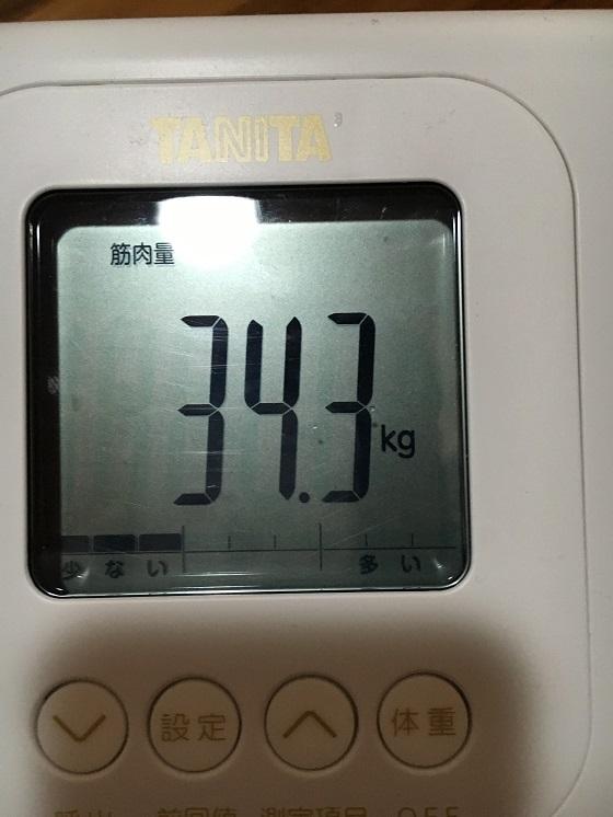 体重計(筋肉量34.3kg)