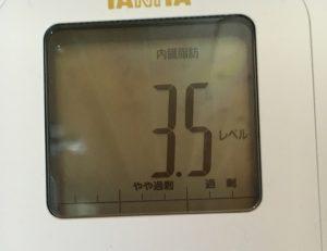 内臓脂肪3.5レベル