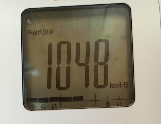 基礎代謝量1048kcal/日