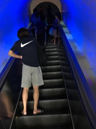 青く光って幻想的なエスカレーター