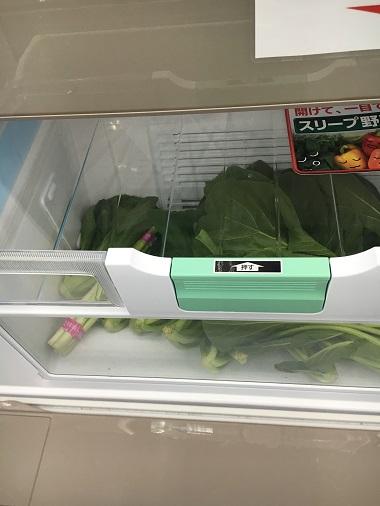 野菜が入った野菜室