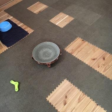 リビングの床