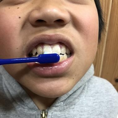歯磨きする息子